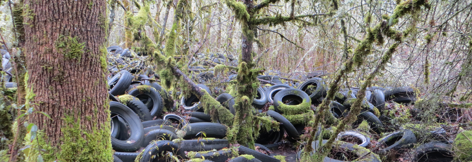 Tire Remediation